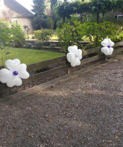 ballon geluk toef