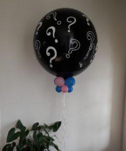 Gender Reveal ballon Waalwijk